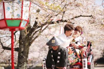 ひこにゃんで有名な滋賀県彦根市での桜和装ロケーション撮影【彦根城】