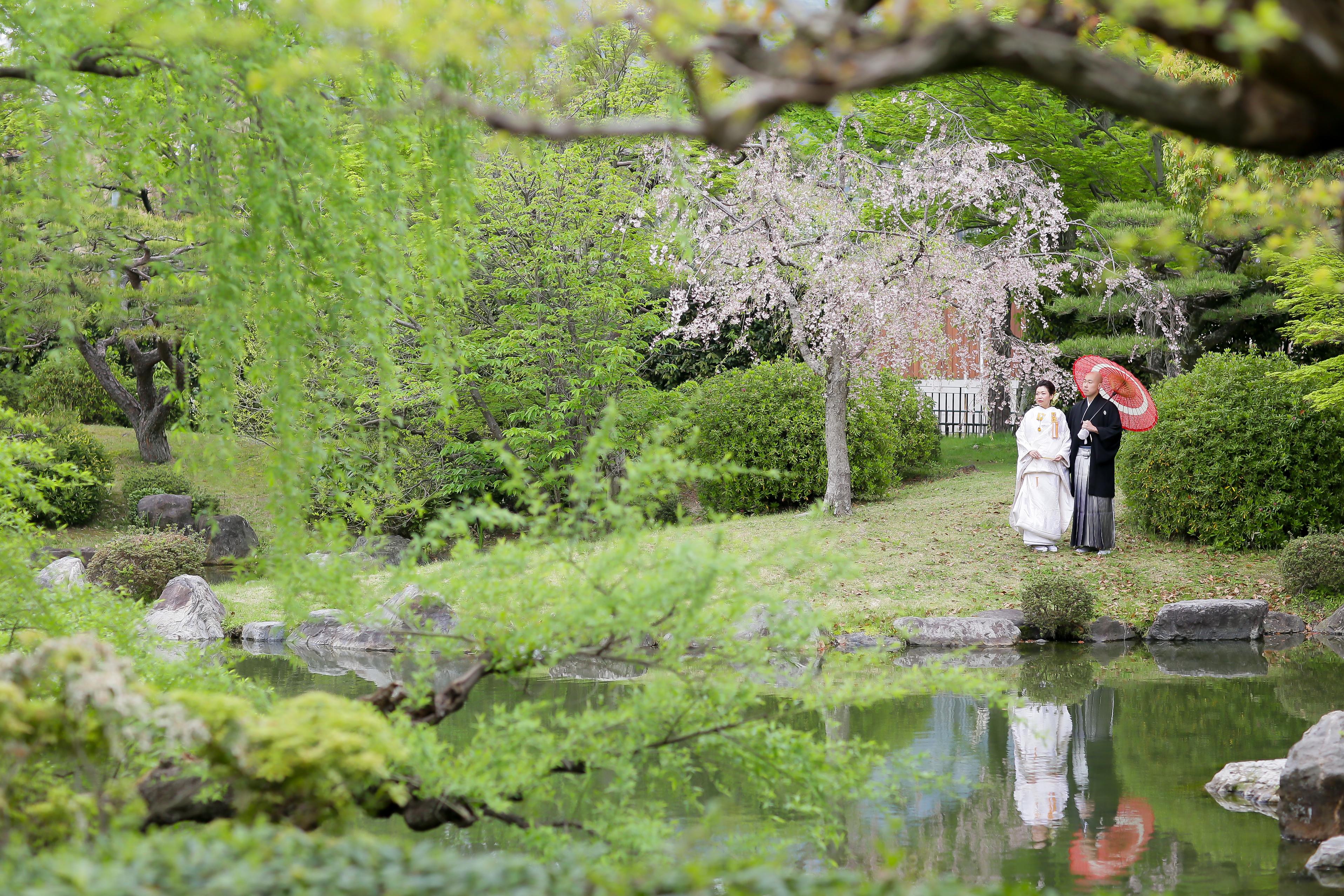 京都岡崎公園の新緑