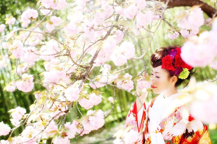 京都桜和装