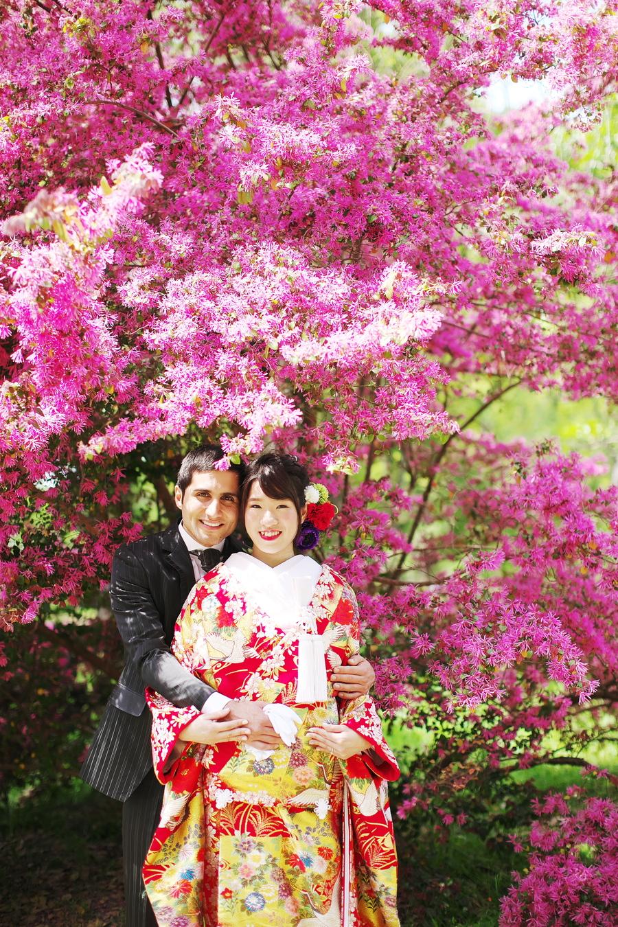 京都新緑シーズン