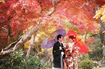 福井も紅葉シーズン到来 天気の良い日は撮影をしませんか?