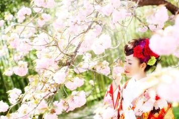 [オススメ]京都で桜ロケーションフォトウェディングのご紹介
