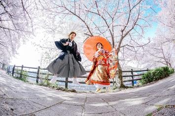 福井から3時間でお越しいただけます【神戸相楽園&桜】