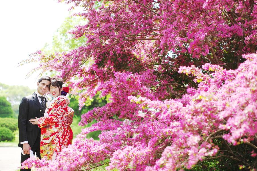 京都マンサク